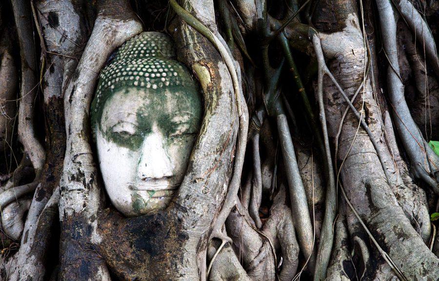 Thailandia Ayutthaya Wat Panang Cohen